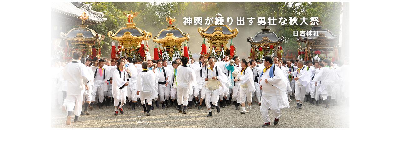 神輿が練り出す勇壮な秋大祭 日吉神社