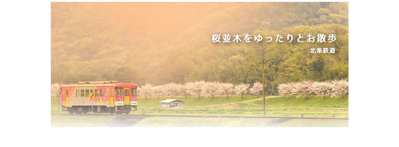 丸山総合運動公園