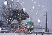 ぼたん雪降る網引駅の朝